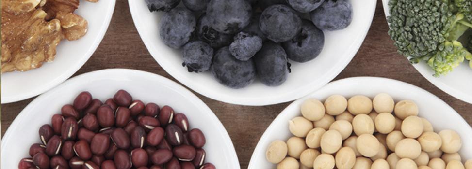 blog alimentos