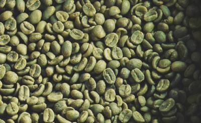cafe-verde-saiba-mais-sobre-ele-blog-nutrify
