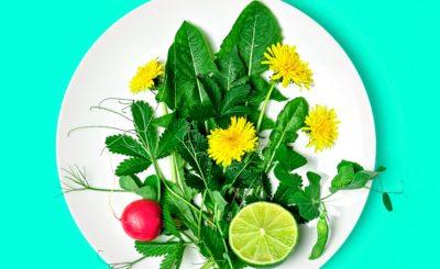 flores-comestiveis-beneficios-delas-em-sua-dieta-blog-nutrify