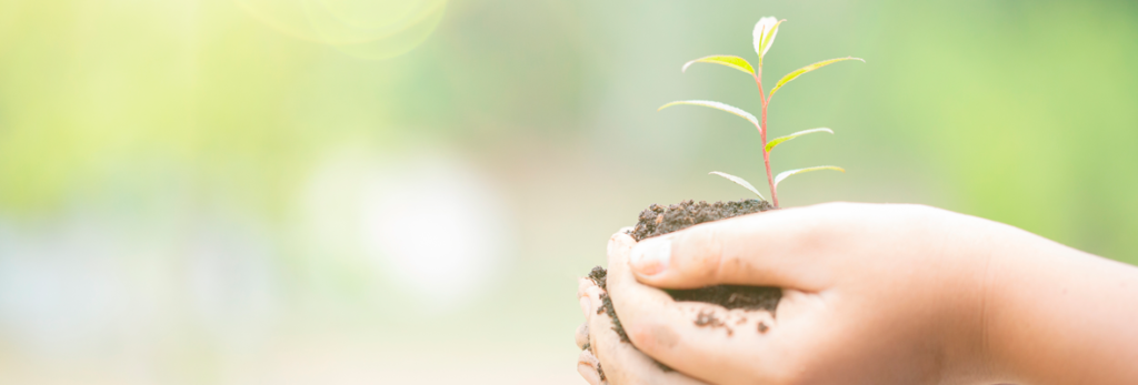 dia-mundial-do-meio-ambiente-como-salvar-nossos-ecossistemas-blog-nutrify