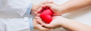 Alimentos e suplementos para a saúde cardiovascular | Blog Nutrify