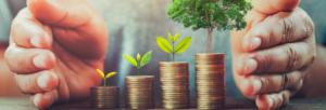 creditos-de-carbono-como-funciona-esse-mercado-blog-nutrify
