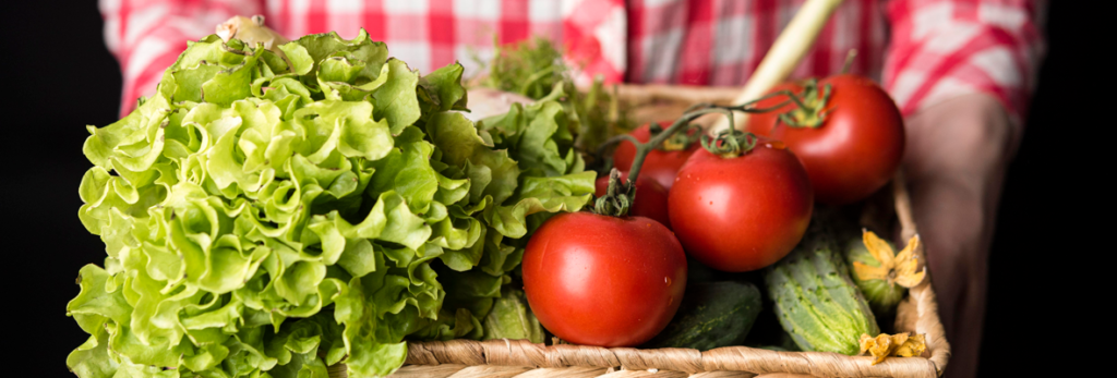 organicos-e-agroecologicos-voce-sabe-a-diferença-blog-nutrify